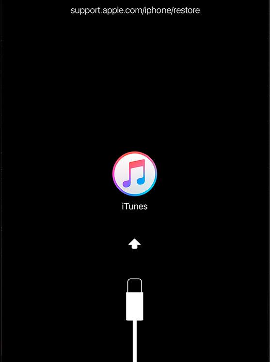 Режим восстановления iPad mini
